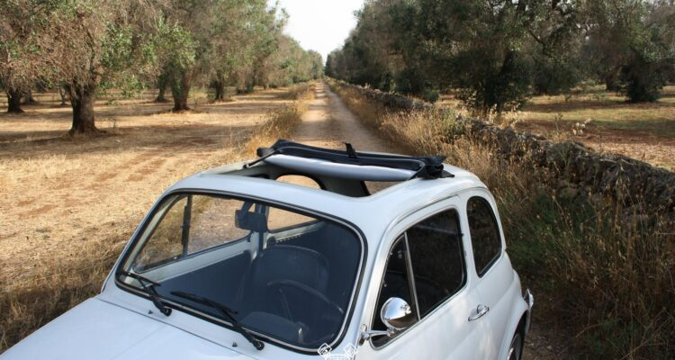 CLASSIC FIAT 500 L